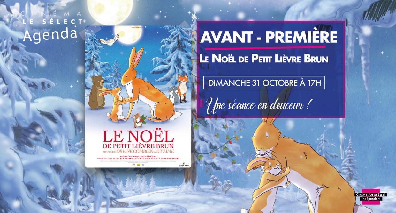 Photo du film Le Noël de petit lièvre brun